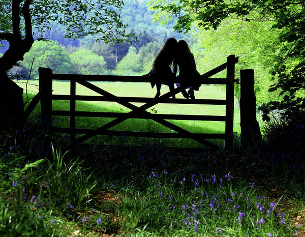 Photograph - Best Friends On A Farm Gate In Devon by Maggie McCall