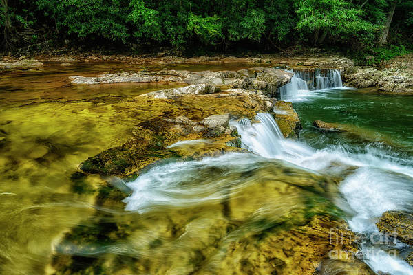 Photograph - Whitaker Falls In Summer by Thomas R Fletcher