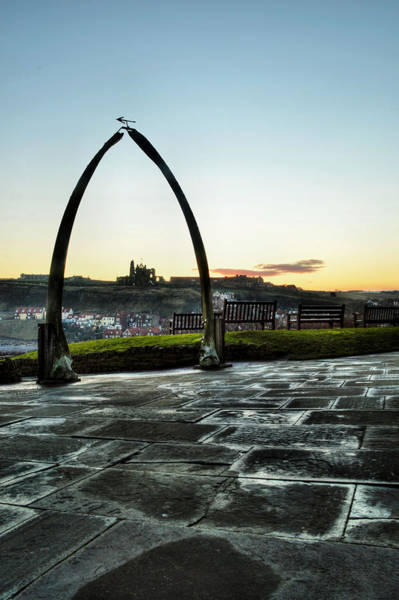 Photograph - Whitby Whalebone Frost by Sarah Couzens