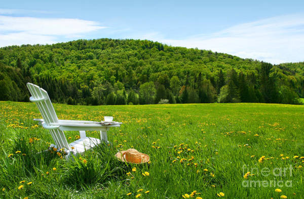 Blooms Digital Art - White Adirondack Chair In A Field Of Tall Grass by Sandra Cunningham