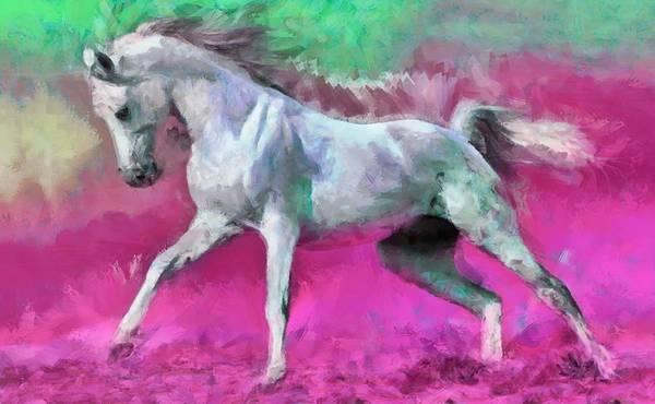 Digital Art - White Arabian Horse Art by Caito Junqueira