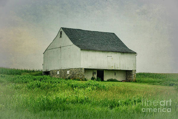 Photograph - White Barn by Debra Fedchin