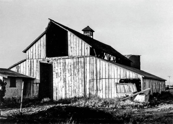 Photograph - White Barn by Gene Parks