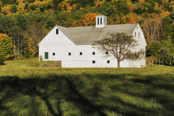 Photograph - White Barn In Color by Tom Singleton