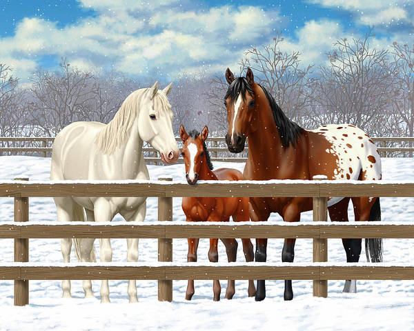 Wall Art - Painting - White Bay Appaloosa Horses In Snow by Crista Forest