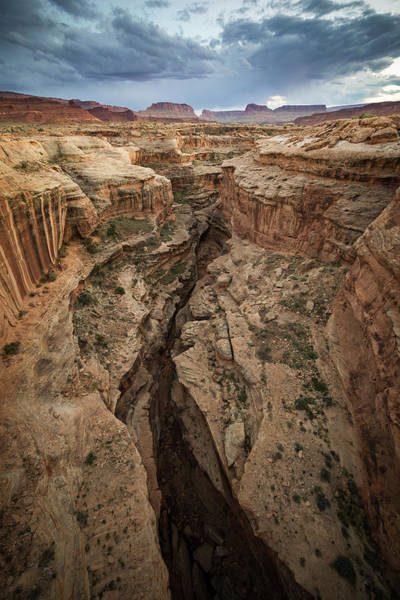 Photograph - White Canyon by Whit Richardson