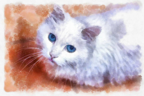 Painting - White Cat Blue Eyes Watercolor Painting by Unsplash Hunt Han