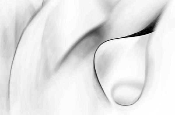 Photograph - White Charcoal by Theresa Tahara