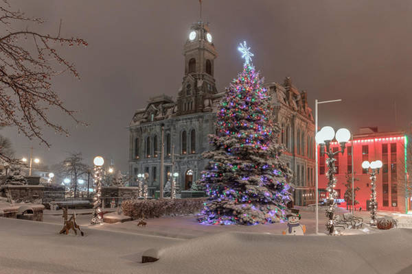 Photograph - White Christmas by Rod Best