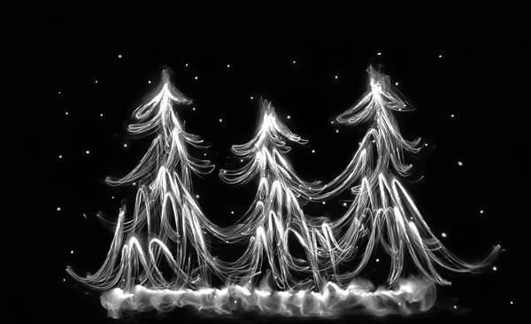 Wall Art - Photograph - White Christmas by Marnie Patchett