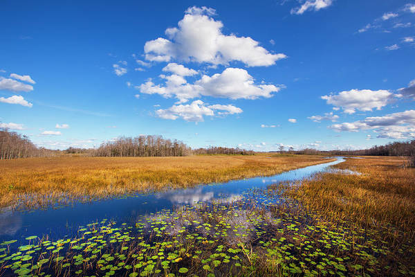 Photograph - White Clouds Over The Marsh by Debra and Dave Vanderlaan