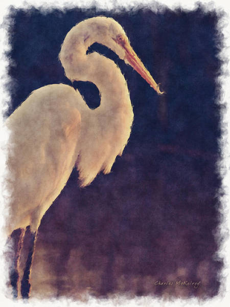 Photograph - White Egret by Charles McKelroy