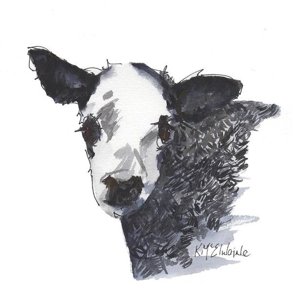 Painting - White Faced Hereferd Calf Baby Cow by Kathleen McElwaine