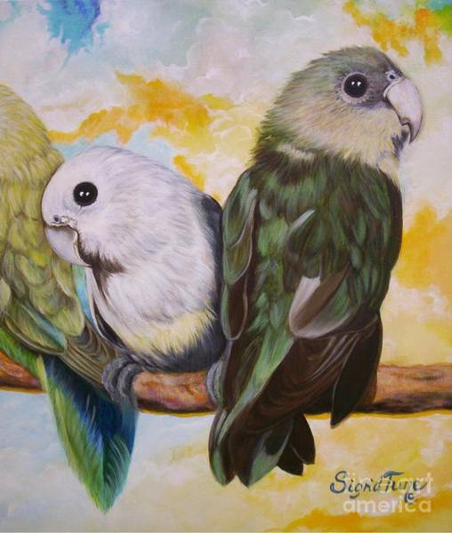 Painting - Chloe The    Flying Lamb Productions           White Faced Lovebirds by Sigrid Tune