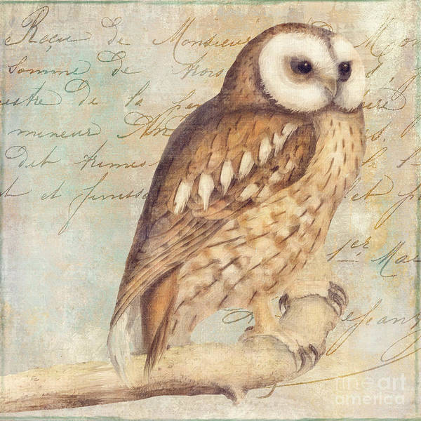 Owl Wall Art - Painting - White Faced Owl by Mindy Sommers