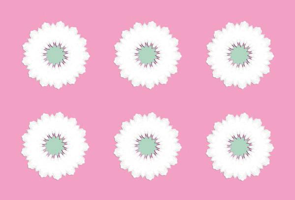 Digital Art - White Flowers by Elizabeth Lock