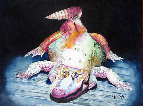 Wall Art - Painting - White Gator by Maria Barry