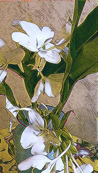 Photograph - White Ginger Aloha Japanese by Joalene Young