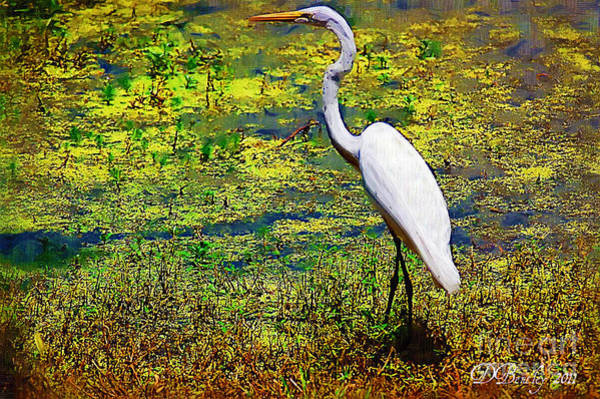Photograph - White Heron 1 by Donna Bentley