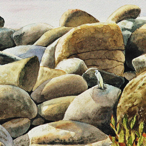Painting - White Heron Resting On The Rock by Irina Sztukowski