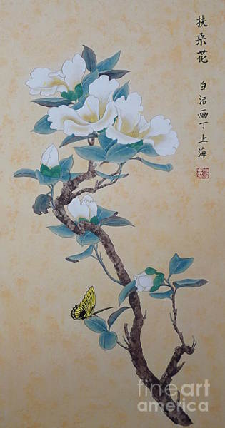 Chinese Brush Painting - White Hibiscus by Birgit Moldenhauer