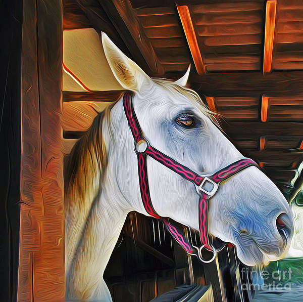 Painting - White Horse by Ian Mitchell