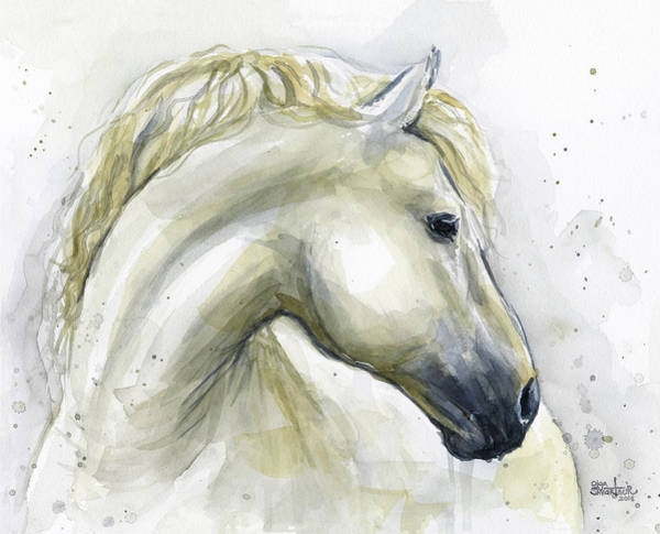 Wall Art - Painting - White Horse Watercolor by Olga Shvartsur
