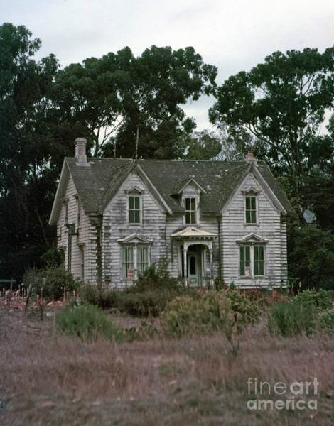 Photograph - White House Ranch It Was South Of Pescadero In San Mateo County. by California Views Archives Mr Pat Hathaway Archives
