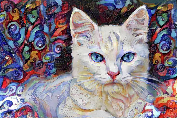 Digital Art - White Kitten With Blue Eyes by Peggy Collins