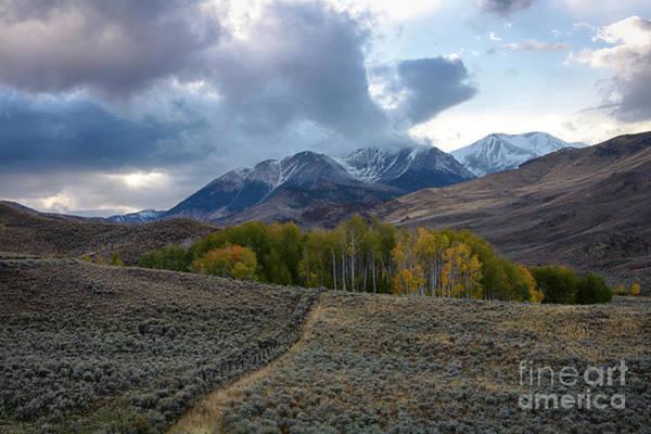 Wall Art - Photograph - White Knob Mountains by Idaho Scenic Images Linda Lantzy