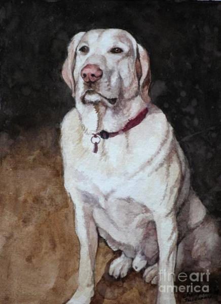 Painting - White Mixed Labrador Retriever by Christopher Shellhammer