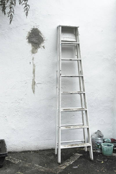 Photograph - White Ladder by Tom Singleton