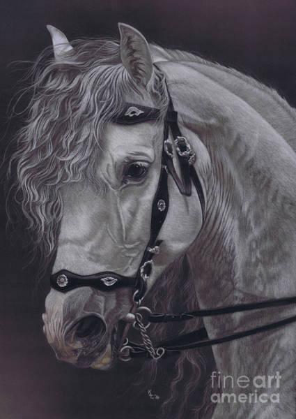 Pastel - White Lightning by Karie-ann Cooper