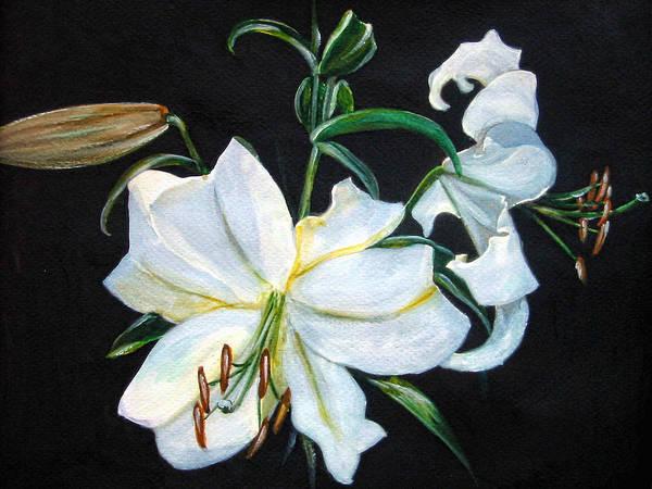 Wall Art - Painting - White Lily by Leyla Munteanu