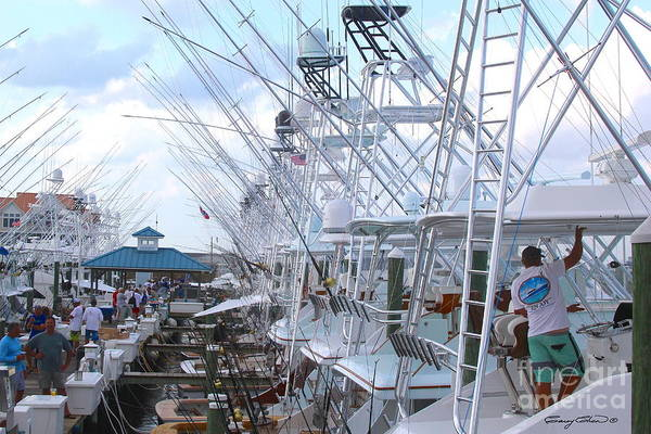 Wall Art - Photograph - White Marlin Open Docks by Carey Chen
