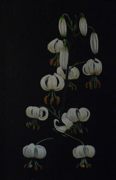Painting - White Martagon Lilly by Richard Le Page