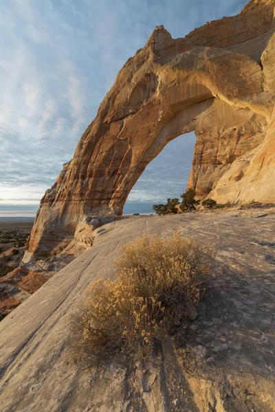Photograph - White Mesa Arch by Dustin LeFevre