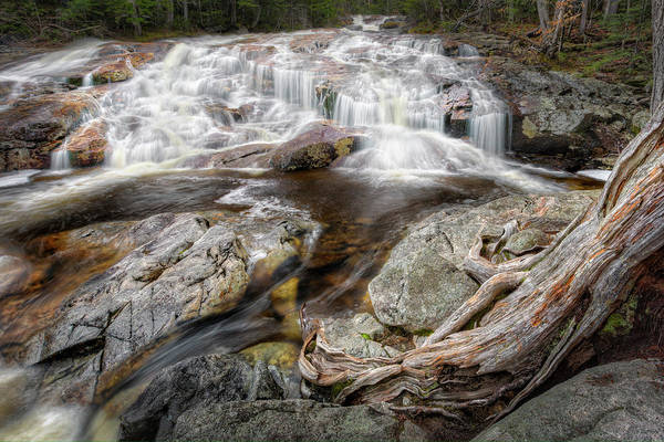 Photograph - White Mountain Waterfalls by Bill Wakeley