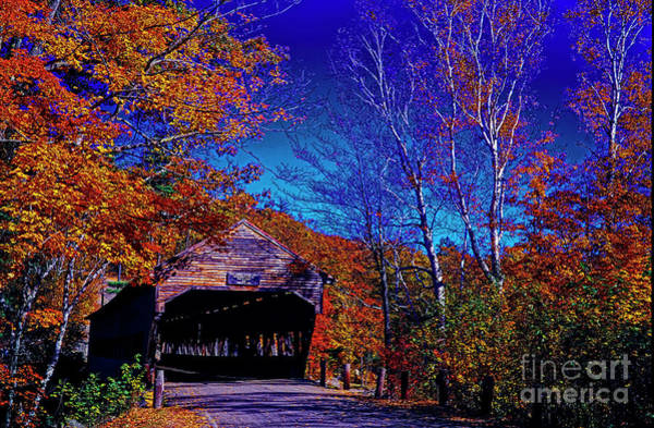 Photograph - White Mountian National Park Forest Albany Covered Bridge  by Tom Jelen