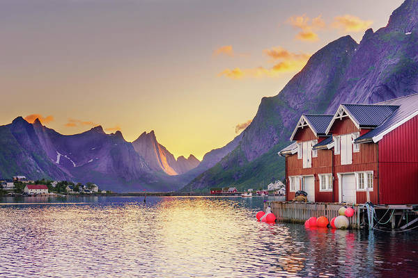 Photograph - White Night In Reine by Dmytro Korol