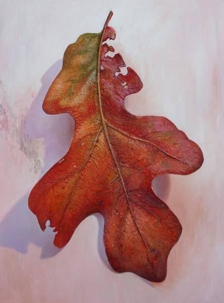 Hans Droog Wall Art - Painting - White Oak Leave by Hans Droog