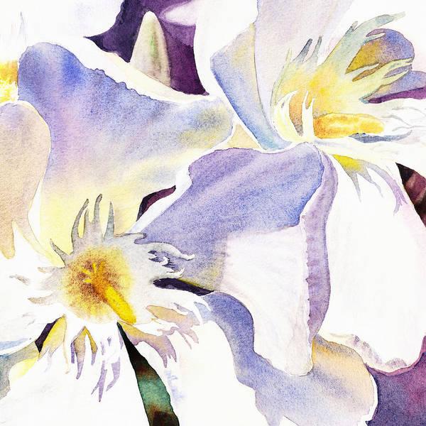 Wall Art - Painting - White Oleander By Irina Sztukowski  by Irina Sztukowski