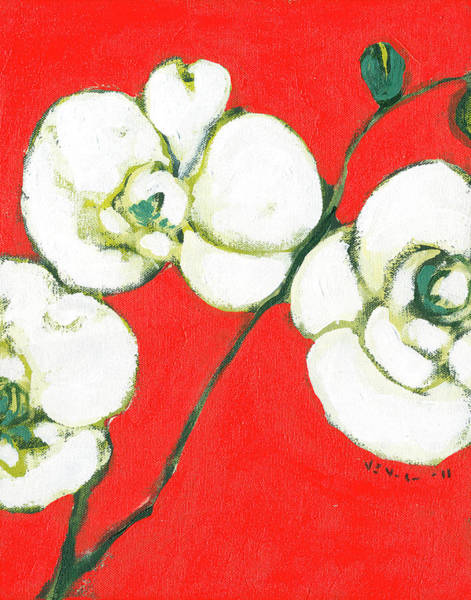 Red Floral Painting - White Orchid by Jennifer Lommers