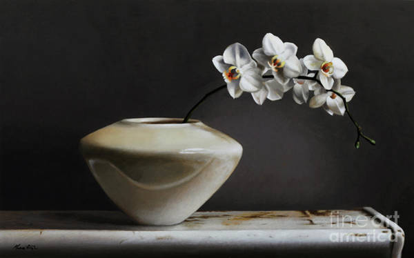 Wall Art - Painting - White Orchids  by Lawrence Preston