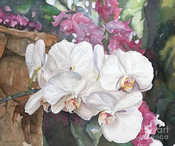 Meijer Painting - White Orchids by Lisa Prusinski