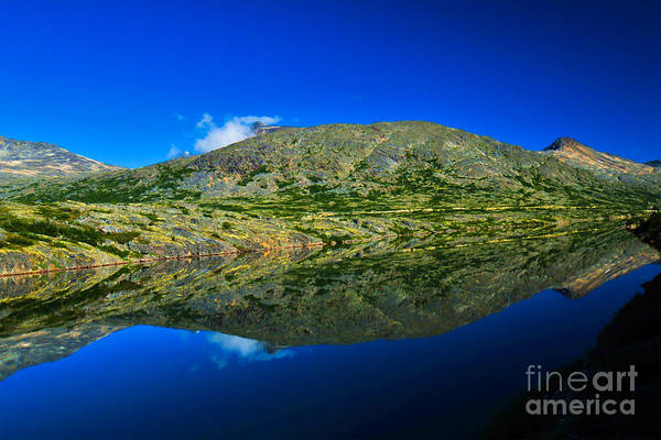 Photograph - White Pass Reflections by Scott and Amanda Anderson