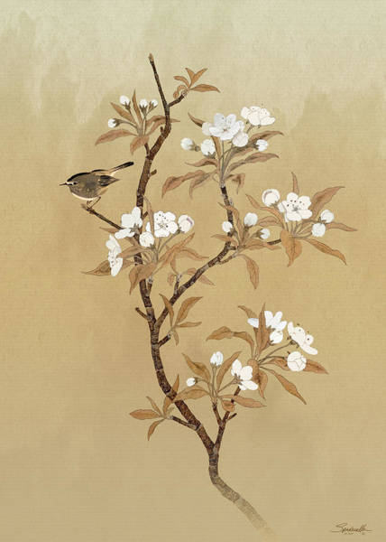 Wall Art - Mixed Media - White Pear Blossoms And Sparrow by M Spadecaller