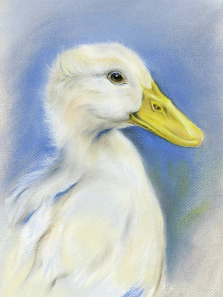 Pastel - White Pekin Duck by MM Anderson