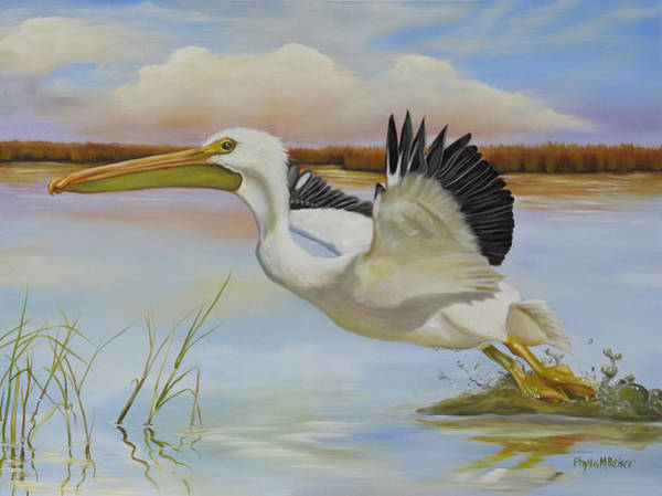 Wall Art - Painting - White Pelican In The Louisiana Marsh by Phyllis Beiser