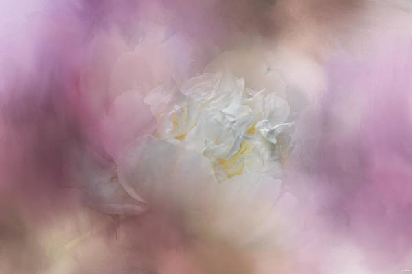 Photograph - White Peony 2 by Jai Johnson